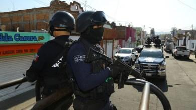 Policía Michoacán, vigilancia
