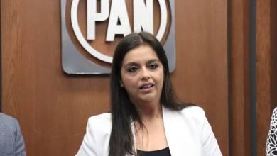 Teresita Herrera Maldonado, PAN