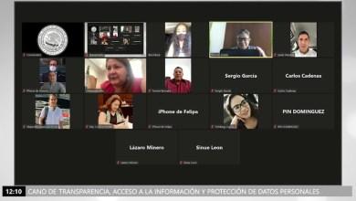diputados,comparecencias virtuales