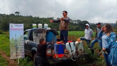 Agricultura Sustentable, Sedrua