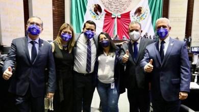 Diputados federales del PAN