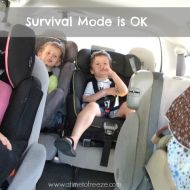 Survival Mode is OK