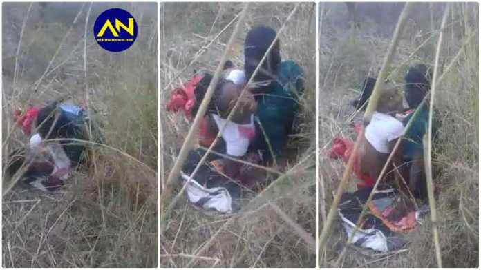 Couple busted £ating themselves in the bush