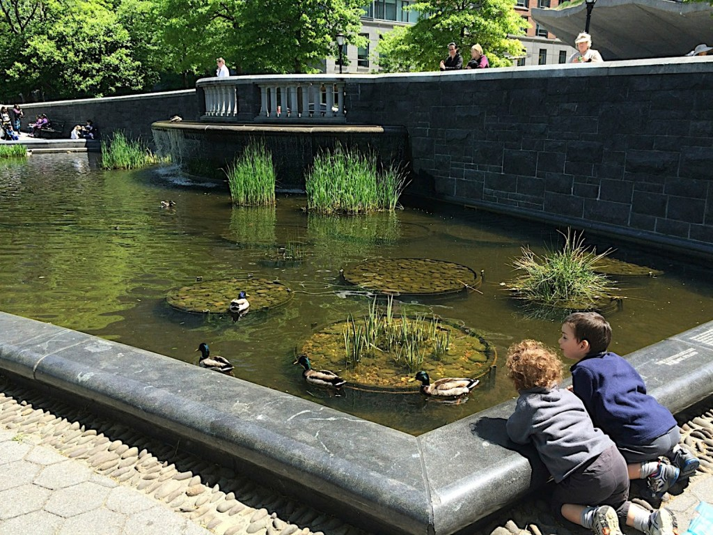 Lily pond at Battery Park City parks