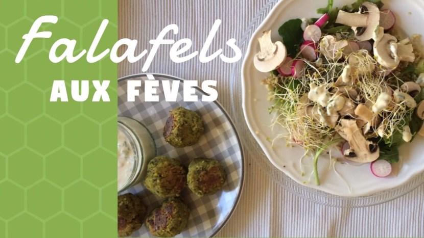 falafels aux feves- recettes végétariennes - recettes vegan - recettes a tire larigot