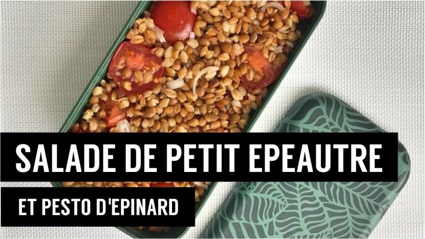 salade de petit epeautre et pesto d épinard - recettes végétariennes et vegan - atirelarigota