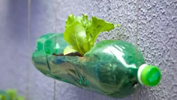 horta-garrafa-pet