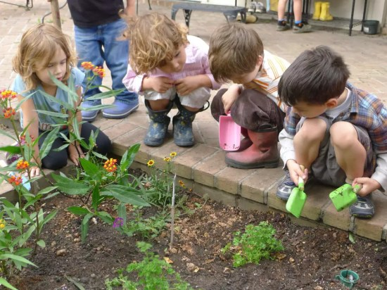 horta-escolar-primavera1