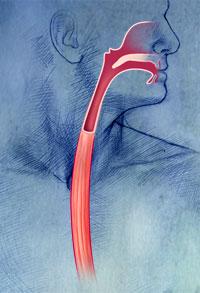 GERD - Atlanta Gastroenterology Associates