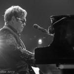 Elton 4 (1 of 1)