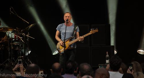 Sting (6)