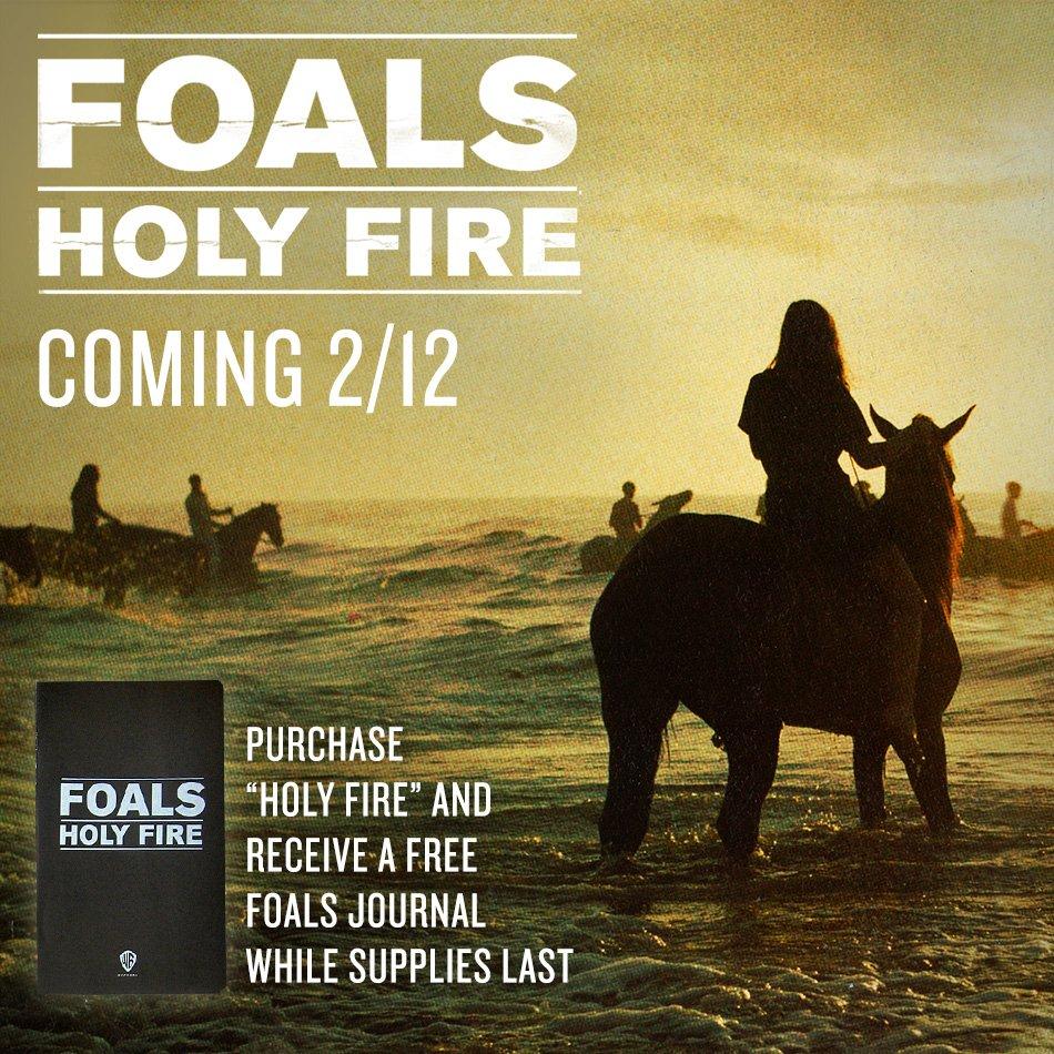 foals-fb-950sq
