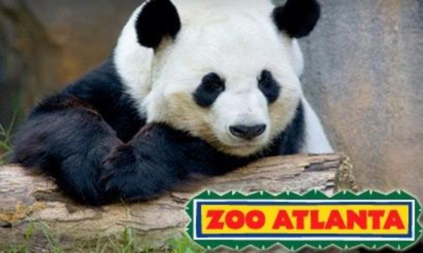 Zoo Atlanta: FREE admission deals for Grandparents Day on
