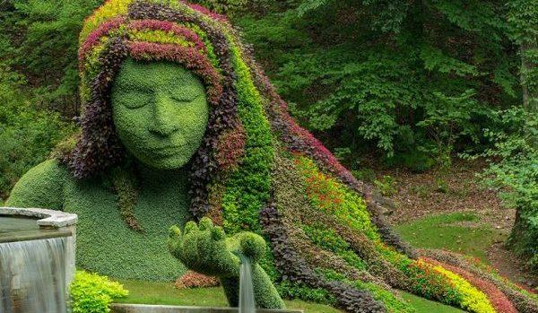 Free Admission To The Atlanta Botanical Garden Thru Sunday Feb 16th Atlanta On The Cheap