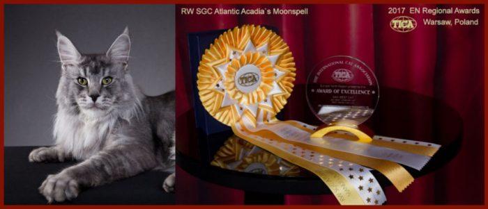 moonspell rw award