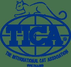 Blue-Globe-Name-Cat-Website