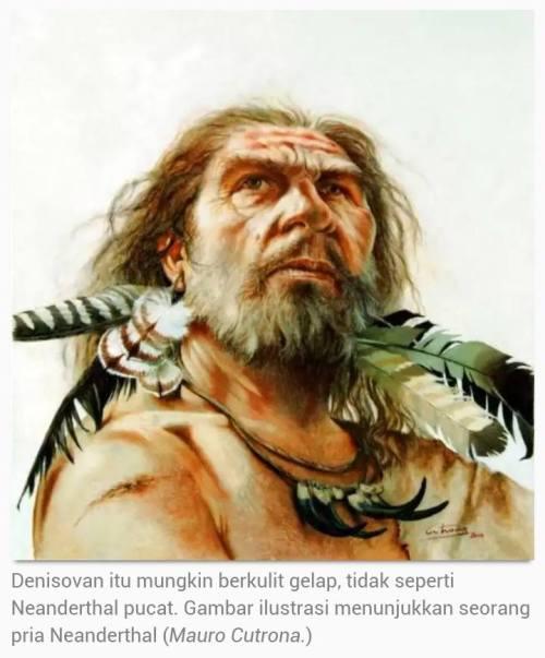 Ilmuwan Buat Peta Persebaran Keturunan Neanderthal …