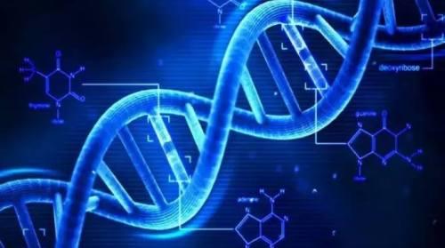 Ada Virus Kuno dalam DNA Manusia