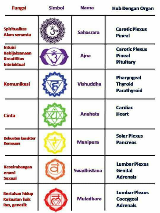 Keseimbangan Chakra & Perilaku Sosial …