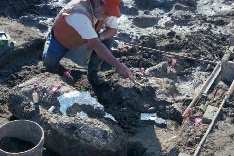 Kejutan Arkeologi