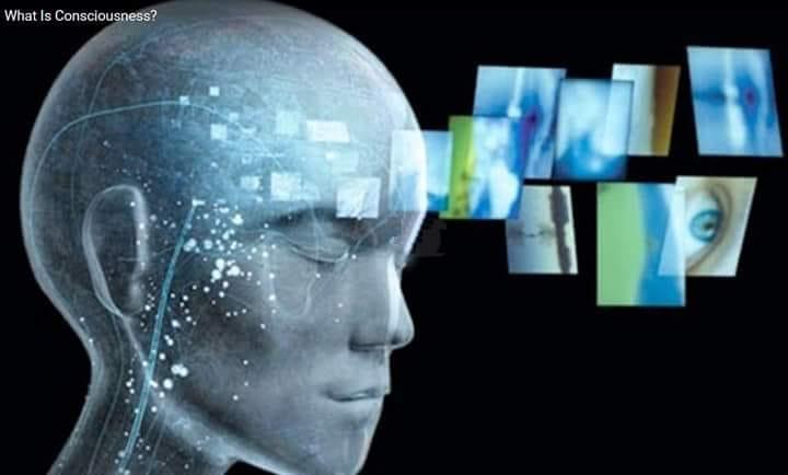 Hasil gambar untuk Pikiran Anda akan Menciptakan Jalan Jika Anda Mengizinkannya.