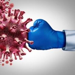 Immune System Optimization