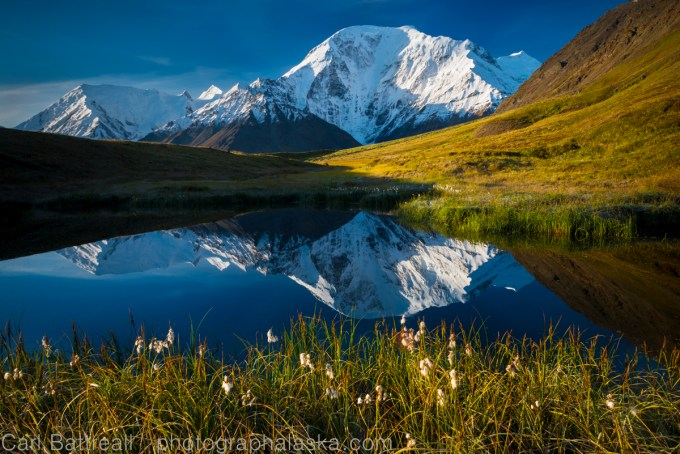 Mount Moffit reflected in a kettle pond, Eastern Alaska Range