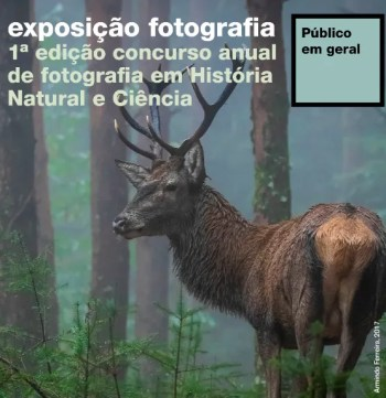 to Feb 24   PHOTO EXHIBIT   Annual Natural History and Science Photo Competition   Rato   5€ @ National Museum of Natural History and Science of the University of Lisbon   Lisboa   Lisboa   Portugal