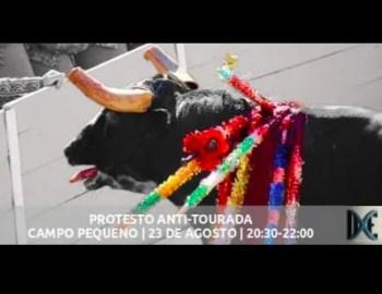 PROTEST | Protest Against Bullfighting | Campo Pequeno | FREE @ Campo Pequeno | Lisboa | Portugal