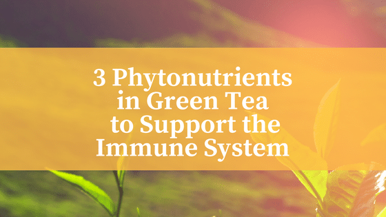 3 Phytonutrients in Green Tea to Support the Immune System