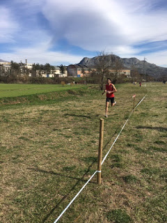 Nicolas Pavoni, Campione regionale Cross Corto 3 km