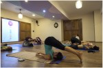 Nirvana Yoga Shala – Mysore India