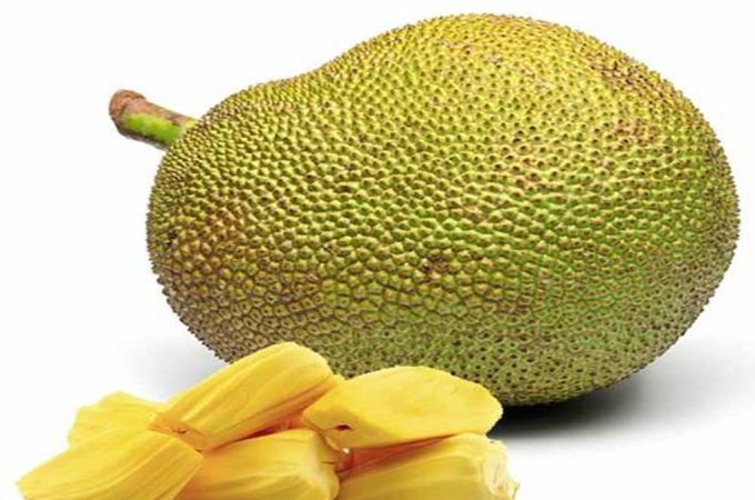 Jackfruit: Your New Best Friend!