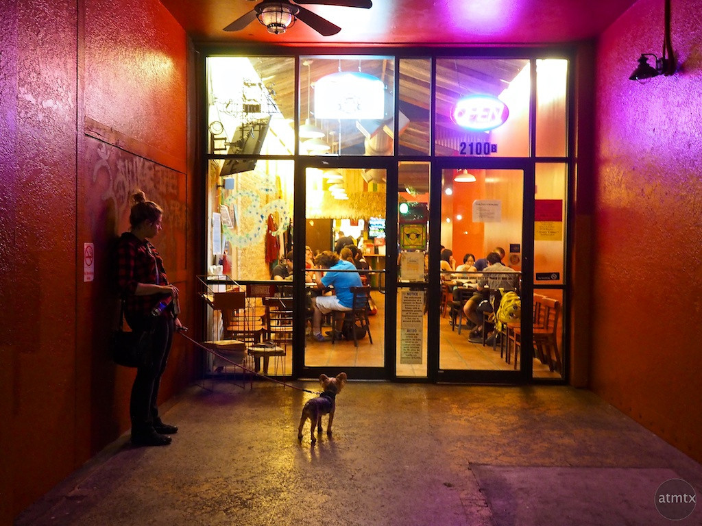 Curious Dog, Guadalupe Street - Austin, Texas