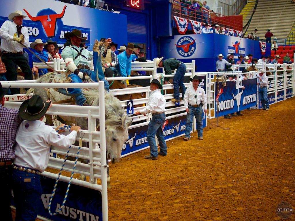 Bucking Bronco 1, Rodeo Austin - Austin, Texas