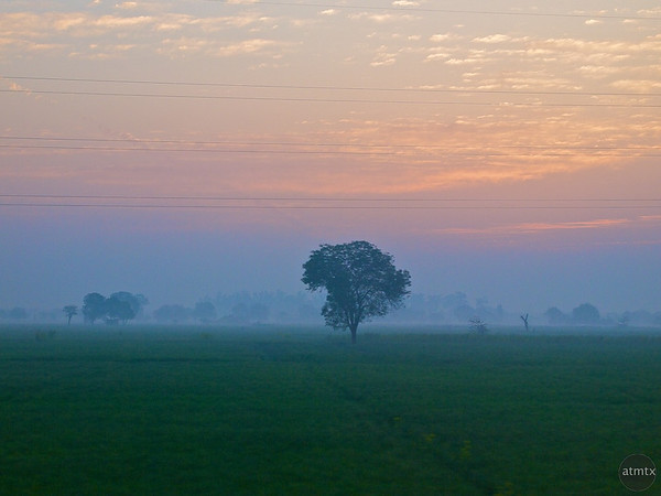 Indian Countryside - Between Delhi and Agra, India