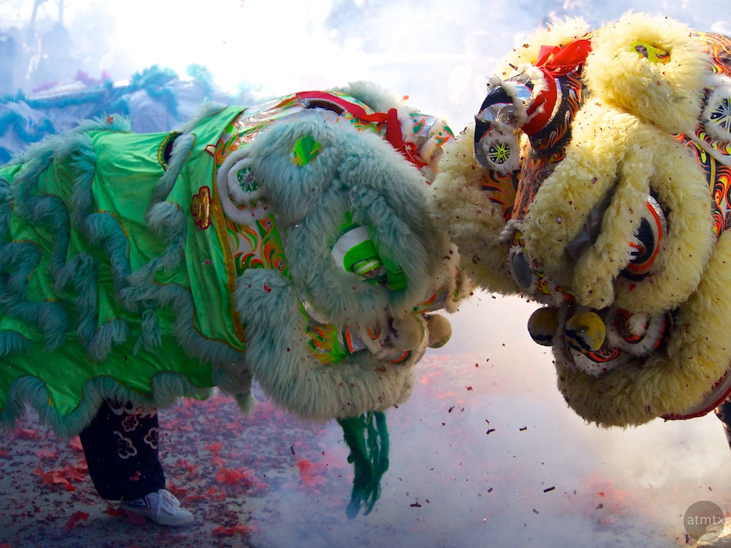 Lion Dance #3, 2013 Chinese New Year Celebration - Austin, Texas