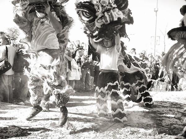 Lion Dancers Unmasked, 2012 Chinese New Year Celebration