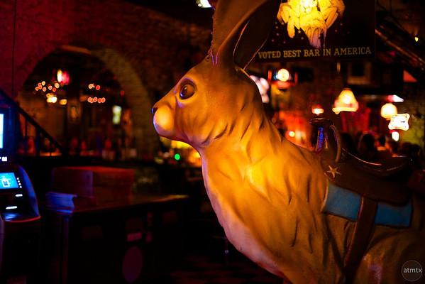 Giant Jackalope, The Jackalope - Austin, Texas