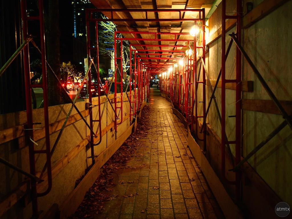 Surprisingly inviting pathway - Austin, Texas