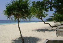 Borromeo Beach Resort