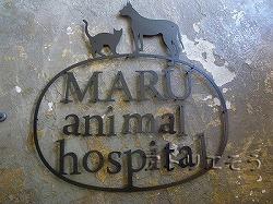 281:動物病院看板