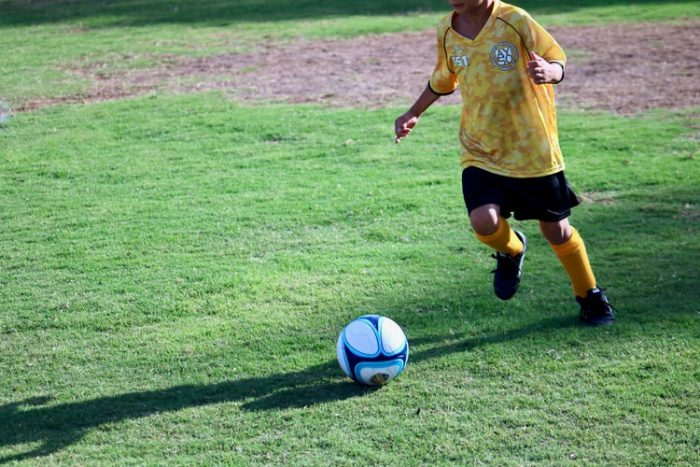 The great game of soccer essay
