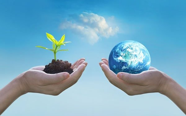 Conservation of Nature Essay in English for School Kids & Children