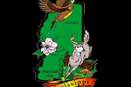 Mississippi State Bird And Flower Flower Shop Near Me Flower Shop