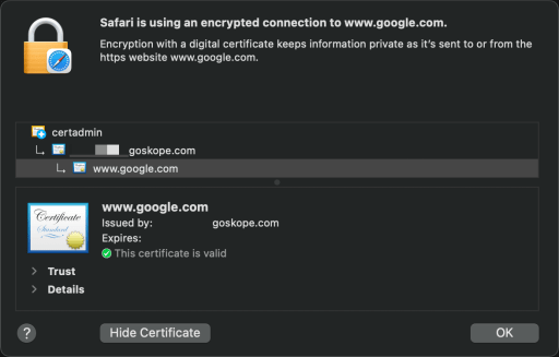 Netskope generated TLS certs