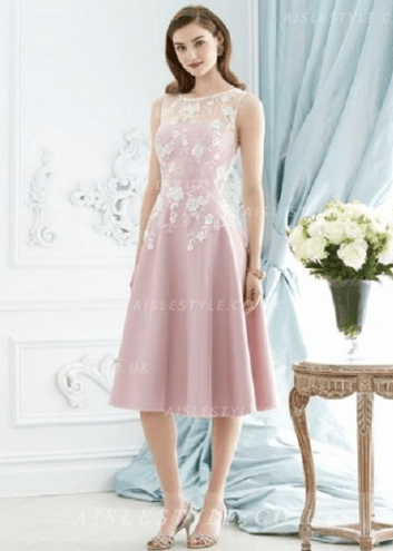 Sleeveless Bateau Neck Lace Appliques Knee Length Blush Pink Organza Bridesmaid Dress