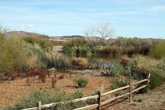 clark-county-wetlands