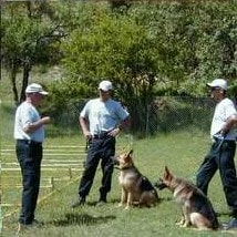 Sid instructing Handlers in Bosnia