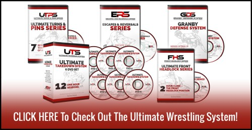Ultimate Wrestling System